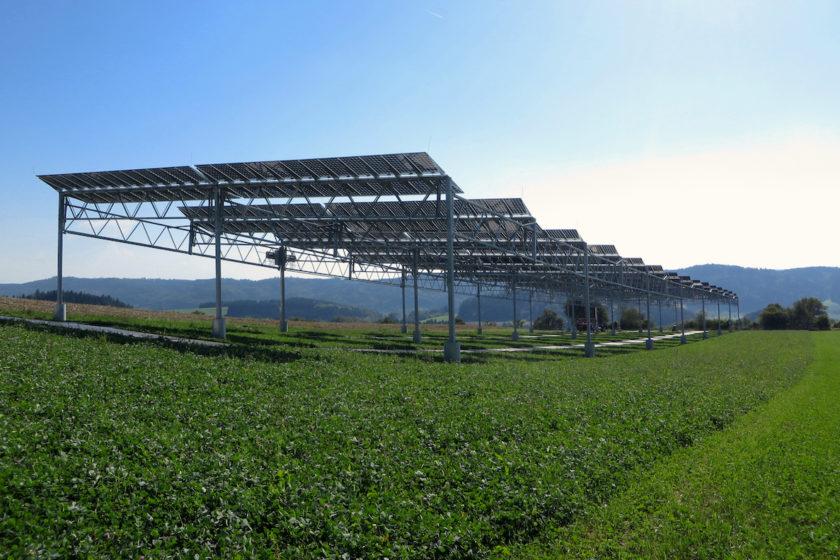 Agrophotovoltaik-Pilotanlage auf dem Gelände der Demeter-Hofgemeinschaft in Heggelbach.
