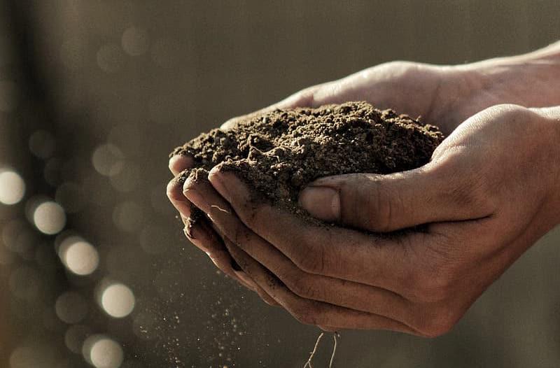 Kompostierung als Bestattungsmethode