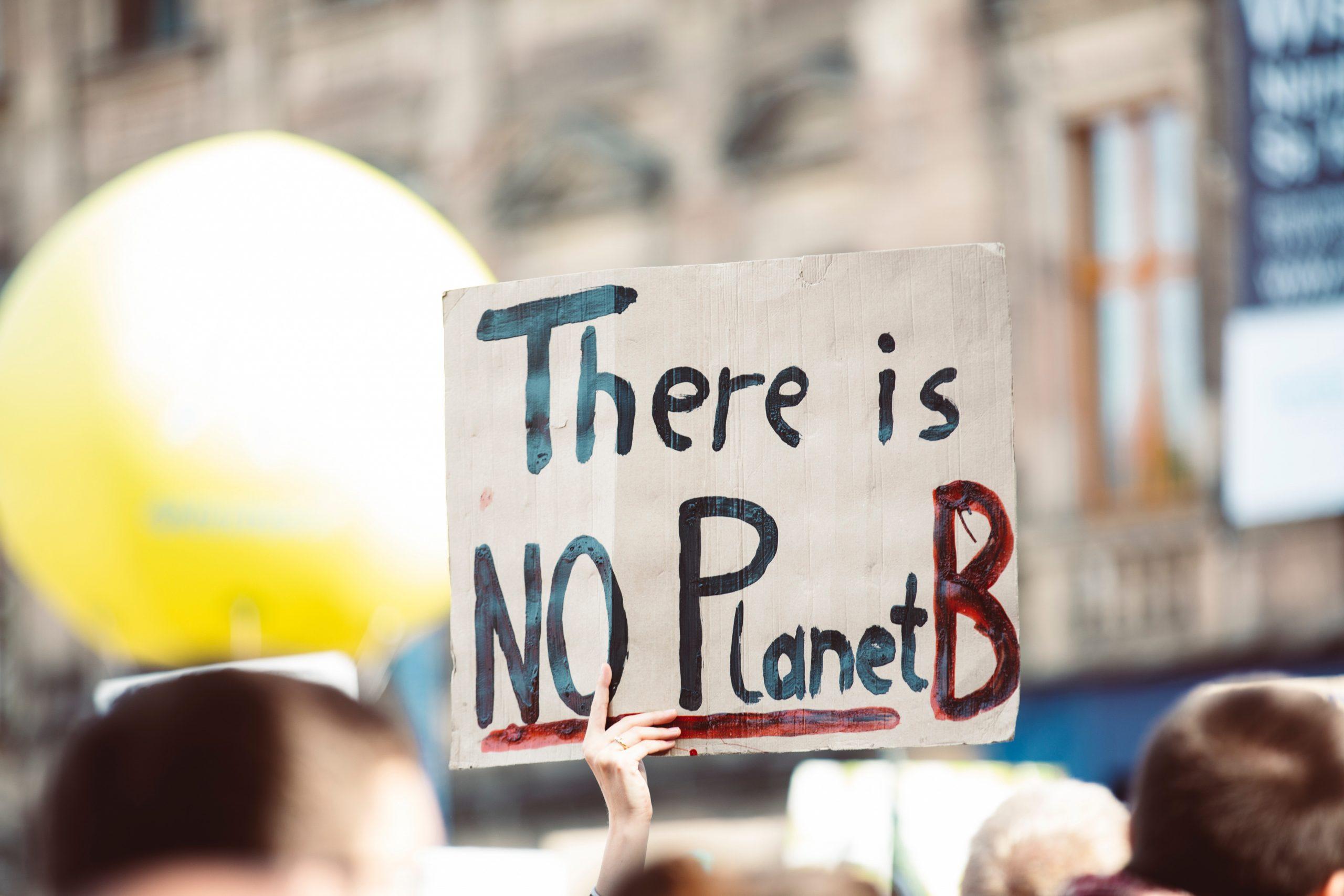 """Ein Plakat mit der Aufschrift """"There is NO Planet B"""" wird hochgehalten."""